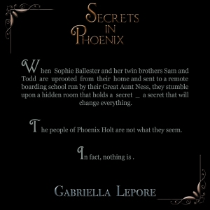Secrets in phoenix blurb