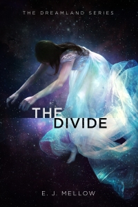 TheDivide_COVER