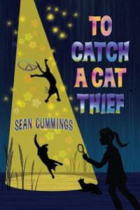 catch a cat thief (review