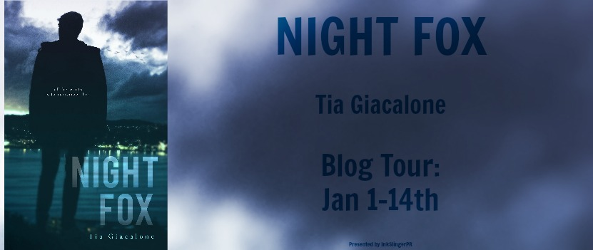 Night Fox BT Banner