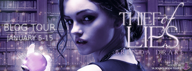 thief of lies tour banner